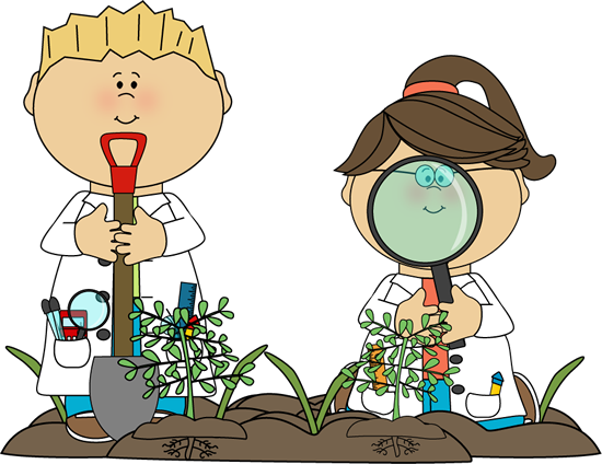 Deze afbeelding heeft een leeg alt-attribuut; de bestandsnaam is plant-science-cliparts-162734-9677395-1.png